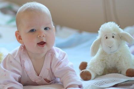 Новорожденный с осликом