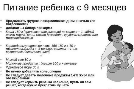 Информация о прикорме